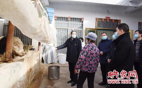 平舆县人民医院图片