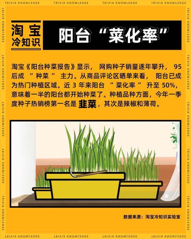 韭菜种子发芽图片大全