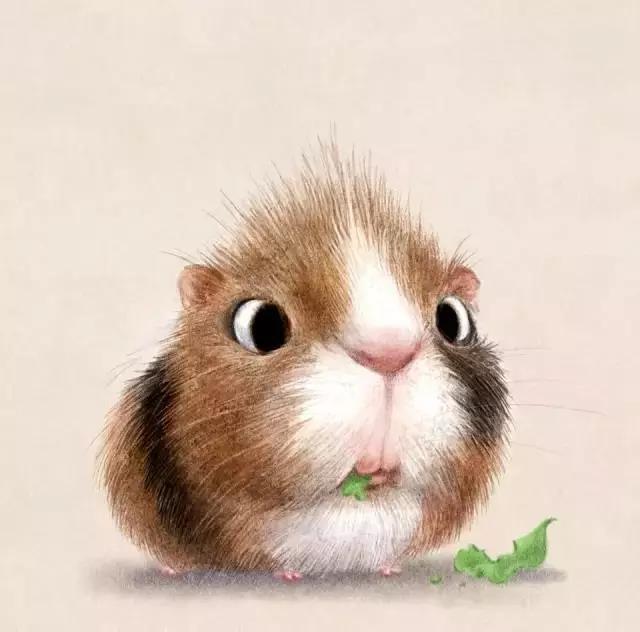 动物画图片大全彩铅画