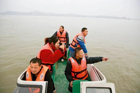濒危江豚:长江最后一种哺乳动物的命运