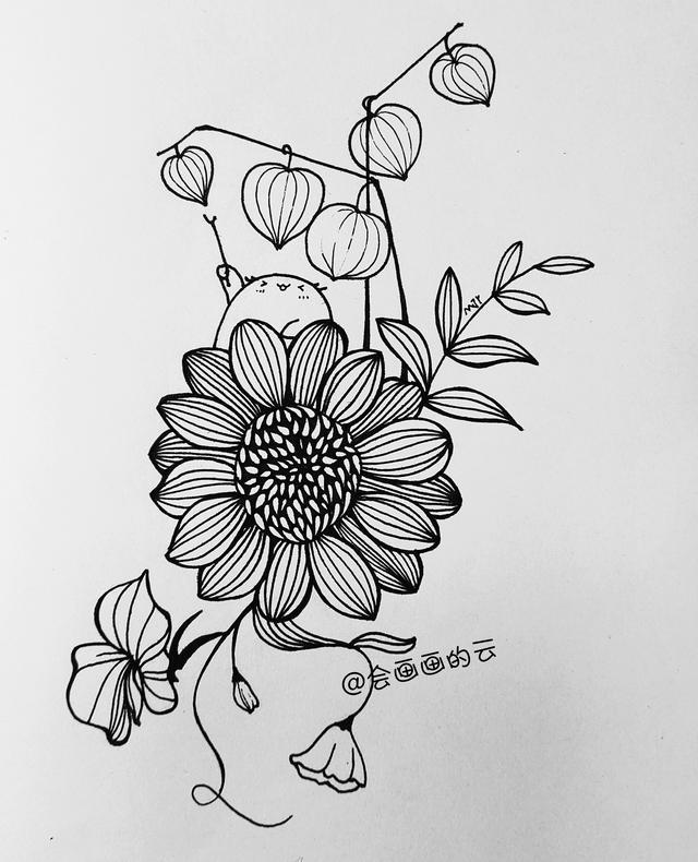 花朵简笔画 - 简笔画 - 懂得
