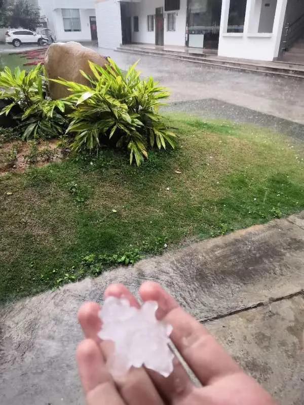 福建台风带着雨 冰雹同时来袭像飞机低空扫射_奇闻... _搜狐视频