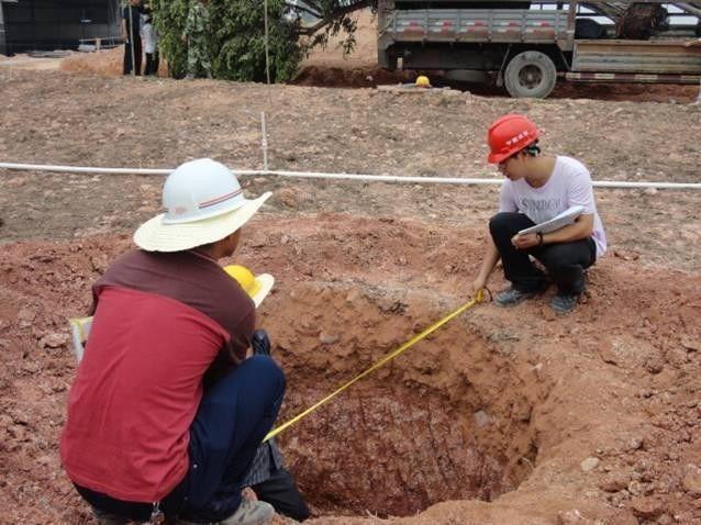 如何挖好一个标准的树穴,这里面大有讲究