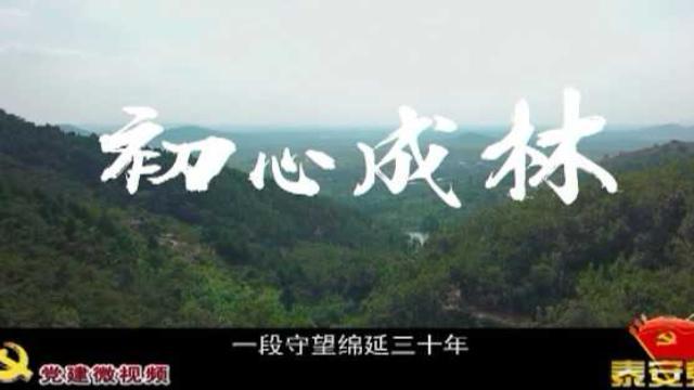 莲花山如意谷全景图片