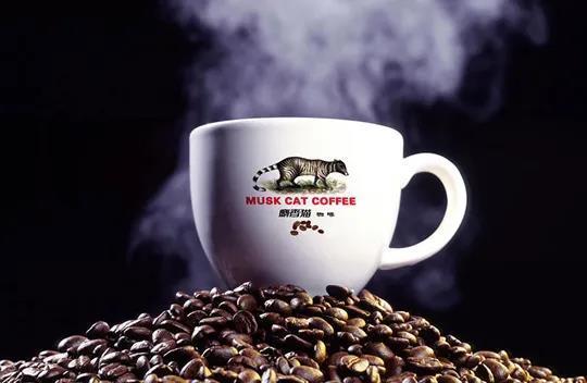 首期花6962万拿地,猫屎咖啡50亿落地云南河口,发展咖啡产业