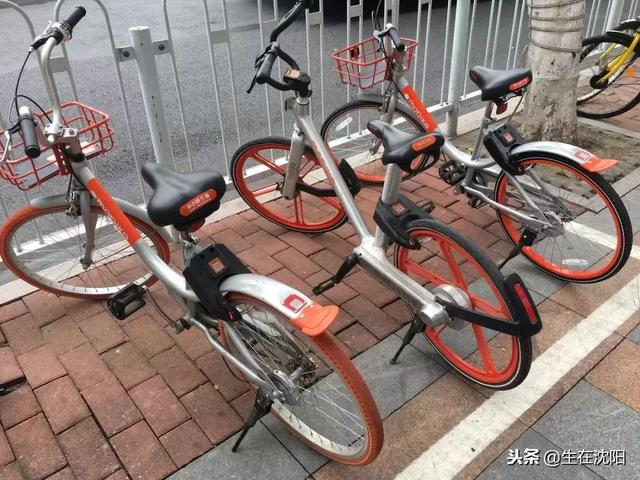 摩拜单车成功抢滩沈阳市场