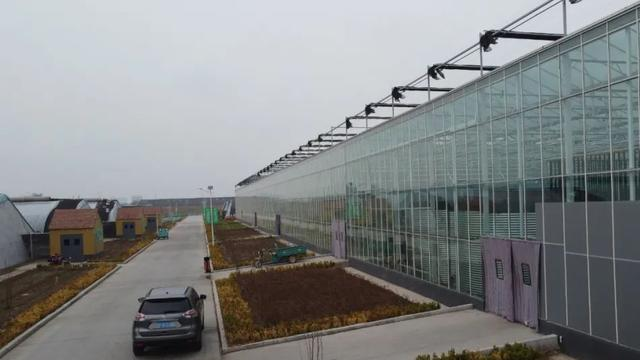 ...温室大棚设计图纸(建筑+结构+设施+供水+供暖+电气+)_土木在线