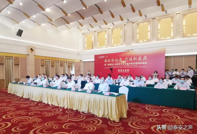 第二届儒商大会暨青年企业家创新发展国际峰会:泰安线上签约16个重点项目,总投资255.77亿元