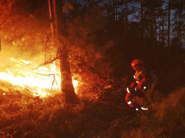 内蒙古大兴安岭北部原始林区多点爆发森林火灾,正紧急扑救