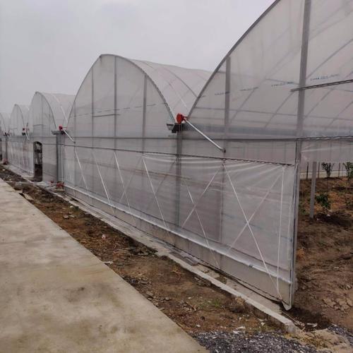 玻璃连栋温室造价多少钱一平米