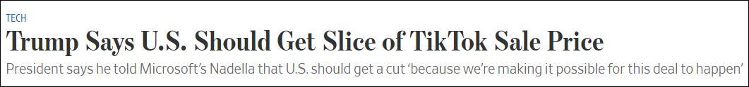 """不管谁买TikTok,先给美国""""过路费"""",专家:全球CEO或不愿与美做生意"""