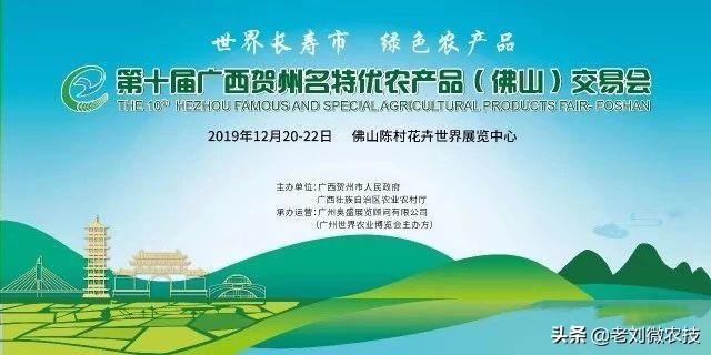 ...博览会今日在陈村花卉世界开幕_顺德新闻网_顺德权威网络媒体