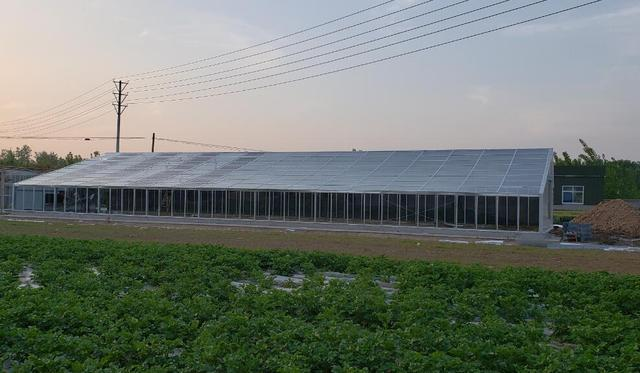 光伏智能温室建设成本高吗?需要哪种钢结构?