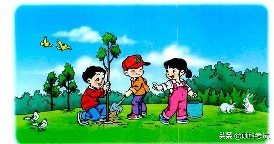 一年级看图写话图片及范文十篇 -中国教育在线