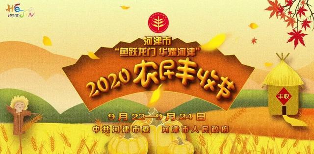 庆丰收 迎小康|阳村乡滩涂地花生 玉米丰收了