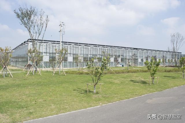 玻璃温室大棚设计及配套系统