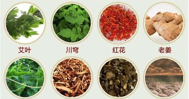 常见中草药300种图谱