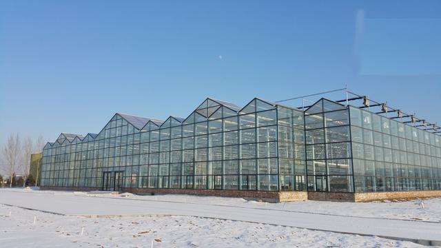 国内玻璃温室大棚每亩造价多少