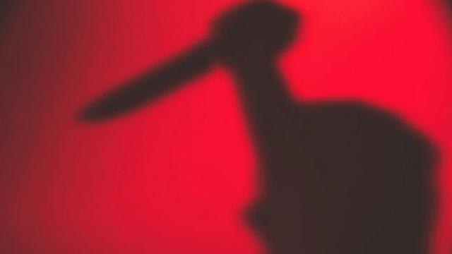 印度囚犯喜迎新室友,被其用尖刀活活刺死,而真相竟是为妹妹报仇