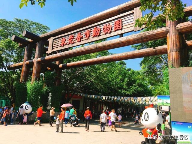 东莞哪里最好玩?香市动物园春节揽客超6万人次