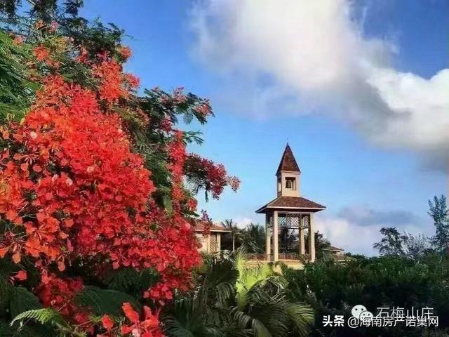 万宁木棉山庄