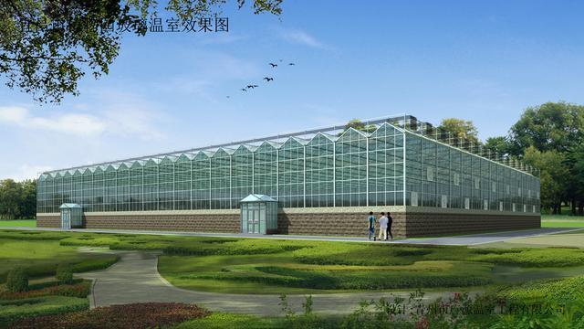 高大景观玻璃温室大棚如何设计?肩高十米的玻璃大棚案例分析