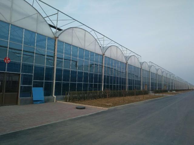 头条微百科建造十亩地的智能化连栋温室大棚需要投资多少钱