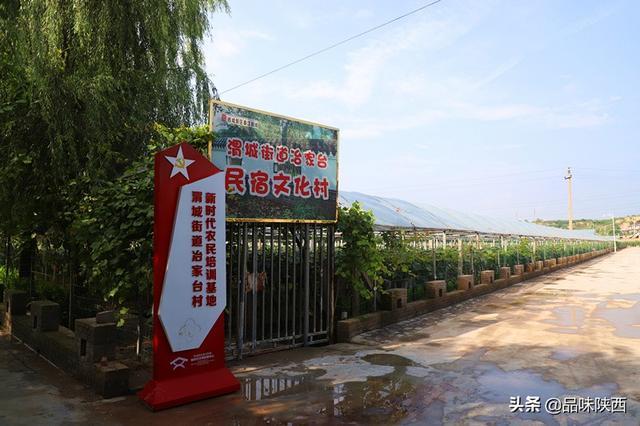 西安城郊一日游推荐,冶家台葡萄节开幕了,适合你遛娃采摘
