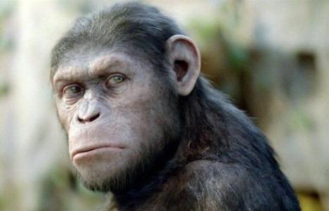中国人的祖先真是东非大裂谷的类人猿露西吗?