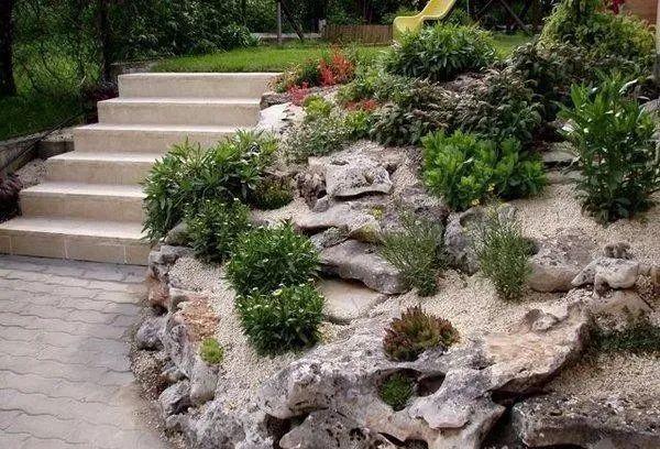 庭院岩石花园设计该注意些什么?