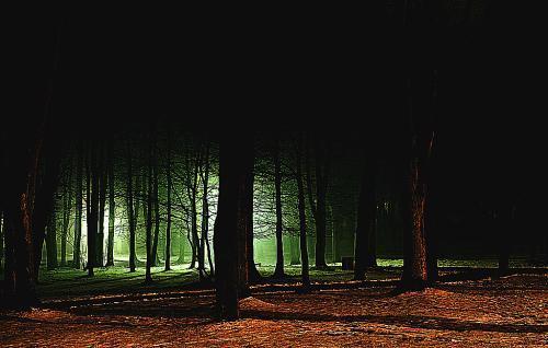 黑暗森林法则,任何一个低概率的事情放大到宇宙级别都会得到答案