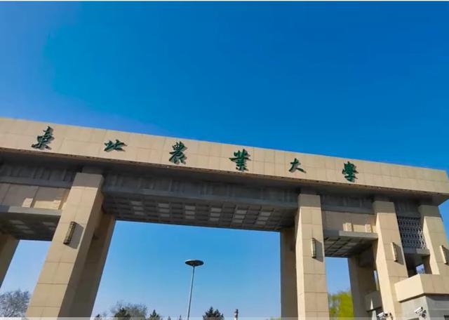 哈尔滨工业大学深圳