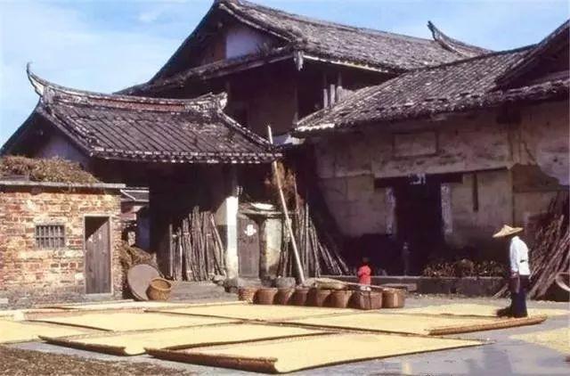 三十年前的乡村老照片:那时的鸡鸭是纯天然的,买东西也比较实惠