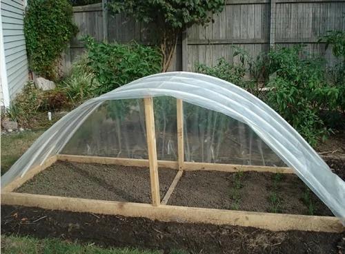 在我美国的家DIY一个农场!教你如何做简易蔬菜暖棚