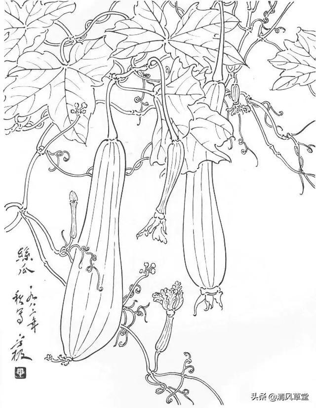 蔬菜水果春天创意作品