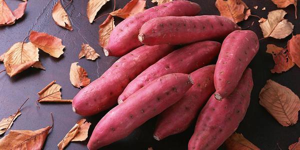 蒸红薯玉米南瓜图片