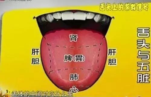 宝宝的舌头正常图片