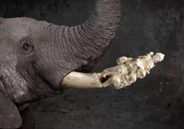 象牙雕刻工艺品图片