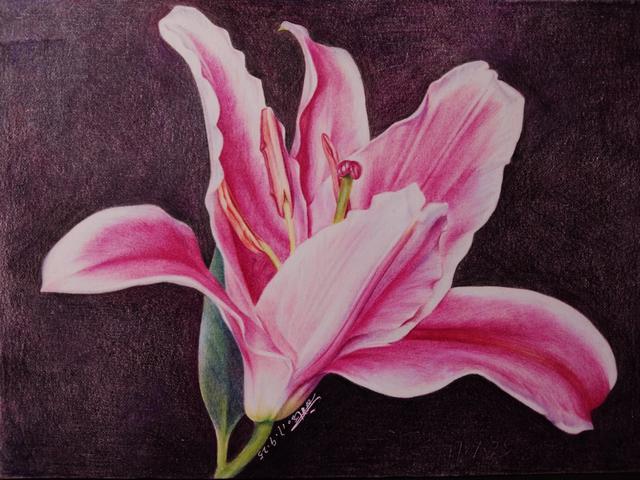 花瓣人物插畫手繪圖片
