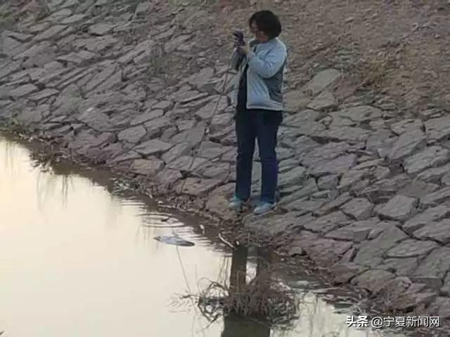 银川沙湖美景简笔画