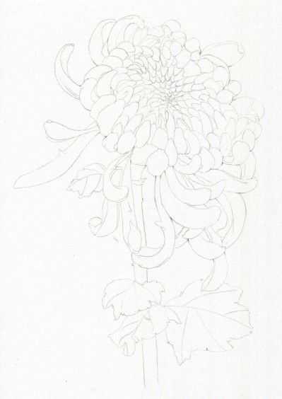 水彩画入门简单的花卉