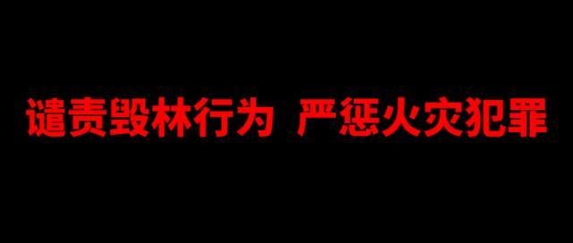 加强森林防火,提高防火意识――张庄镇中心幼儿园防火宣传_美篇