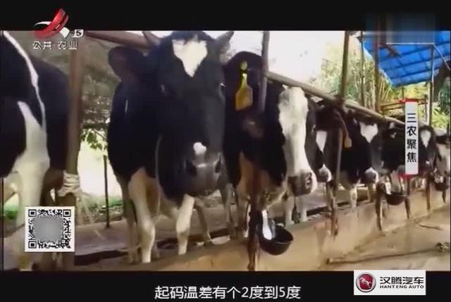 屏山牧场_友客旅游