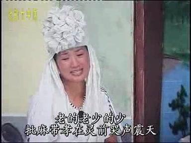 刘晓洁的性感照片