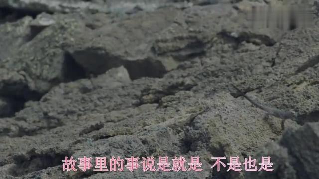 歌曲《故事就是故事》 演唱:戴娆_精彩音乐汇_视频_央视网