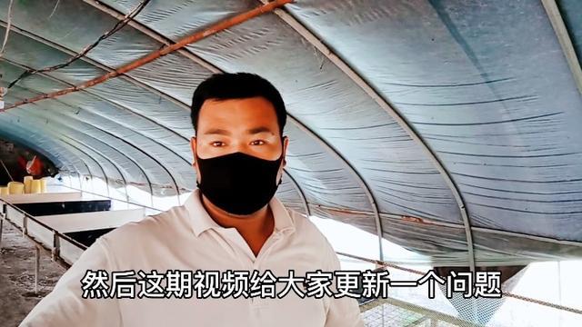 辛庄乡高辛村养鹅基地 - 范县网 - 手机版