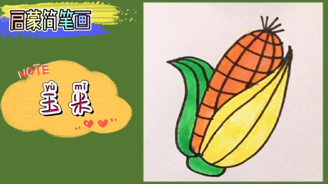 郑州大玉米图片