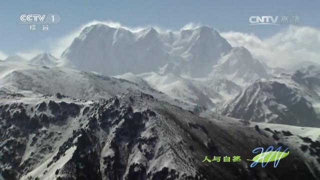 为什么新疆要以天山山脉划分为南疆和北疆?今天算长见识了