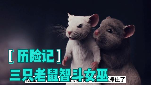 三只可爱的勇敢的小老鼠勇斗#女巫 头子#抖音小助手 #奇幻电影