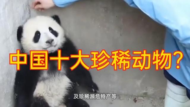 中国十大动物国宝介绍